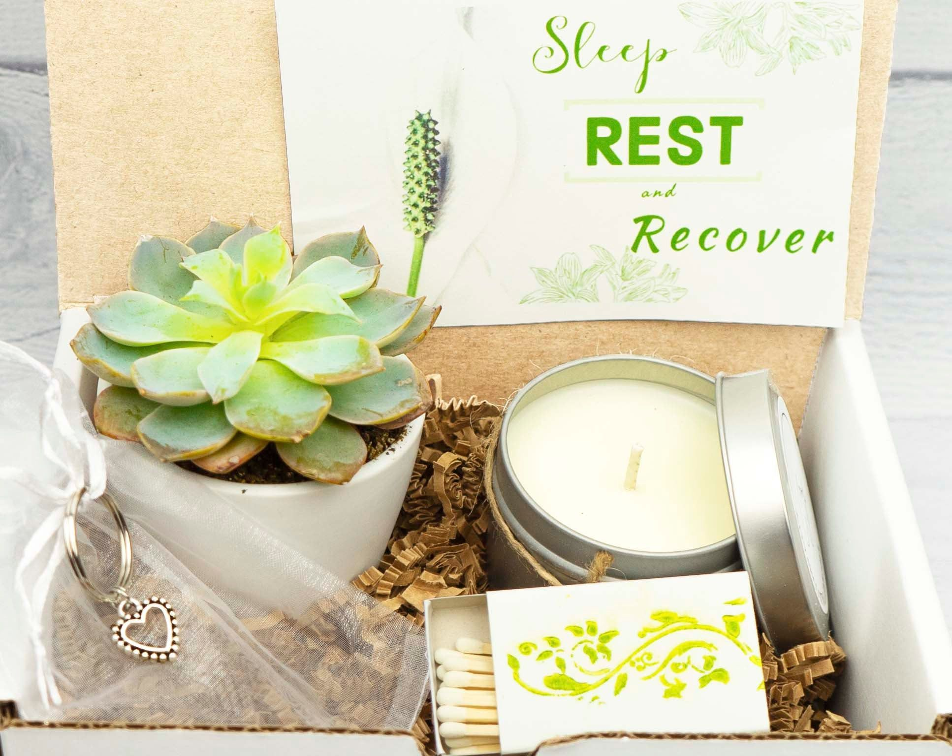 Get well box gift boxlive succulent succulent gift box