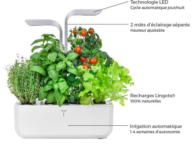 cultivez chez vous des aromates fleurs comestibles et mini l gumes toute l 39 ann e et sans. Black Bedroom Furniture Sets. Home Design Ideas