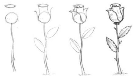 Easy Flowers To Draw For Beginners Step By Step Flowers Drawings