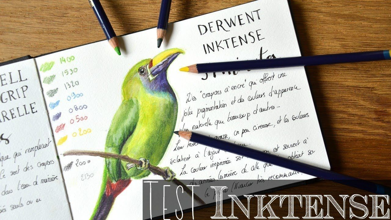 Crayons aquarellables Inktense : Mon avis | Watercolor ...