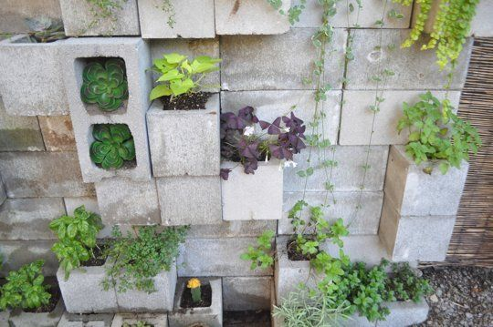 Budget Backyard: 10 Ways to Use Cheap Concrete Cinder Blocks Outdoors