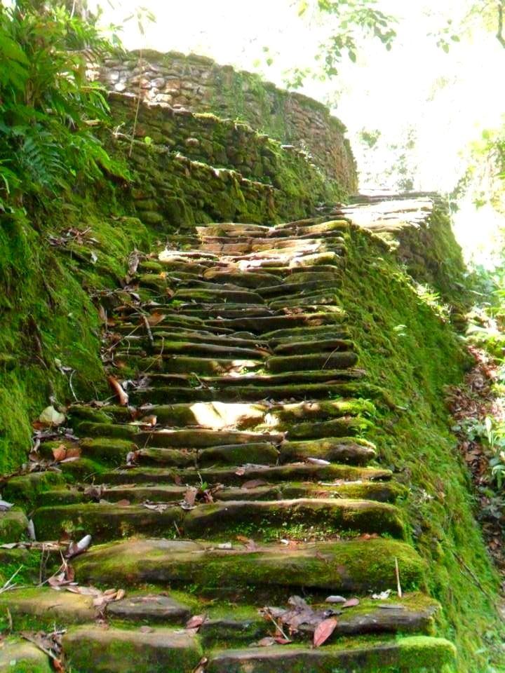 Escalas Hacia Las Terrazas Tayronas Lost City Trek Sierra