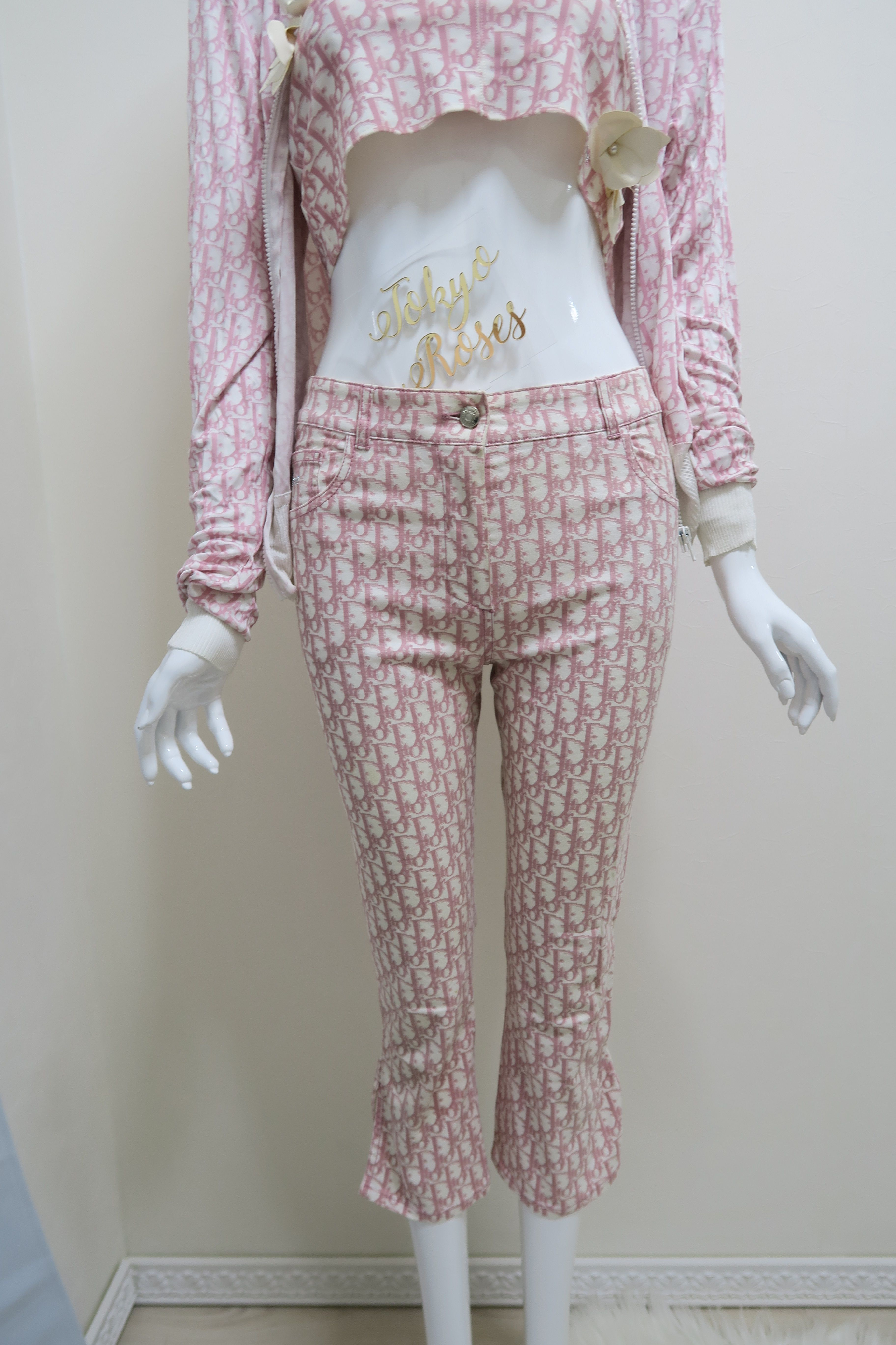 5abada61779 Christian Dior Pink Trotter Logo Print Pants Ankle Freezer in 2019 ...