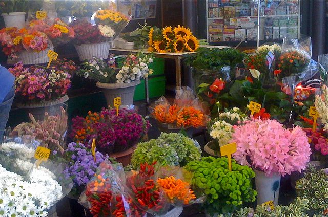 Flowers for sale in Rome - love to flower shops in europe.