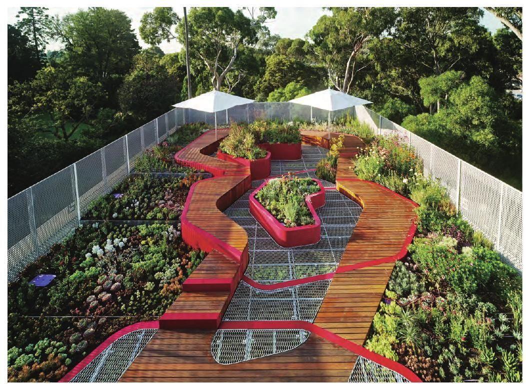 Roof Garden Landscape - World Landscape Case Studies | Living Roofs, Roof Garden, Terrace Design