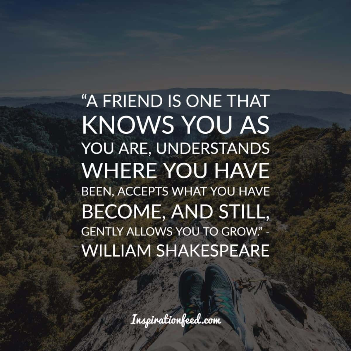 40 Friendship Quotes To Celebrate Your Friends Quotes Pinterest