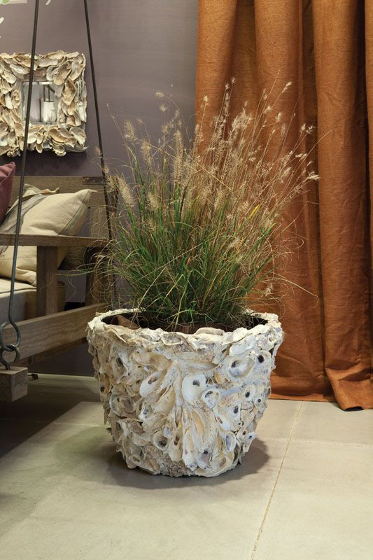 Oyster Shell Planter A Must Do Shell Planter Oyster Shells Decor Oyster Shell Crafts