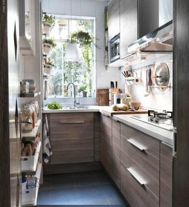 Plantas en cocina | Casa | Pinterest | Plantas y Cocinas