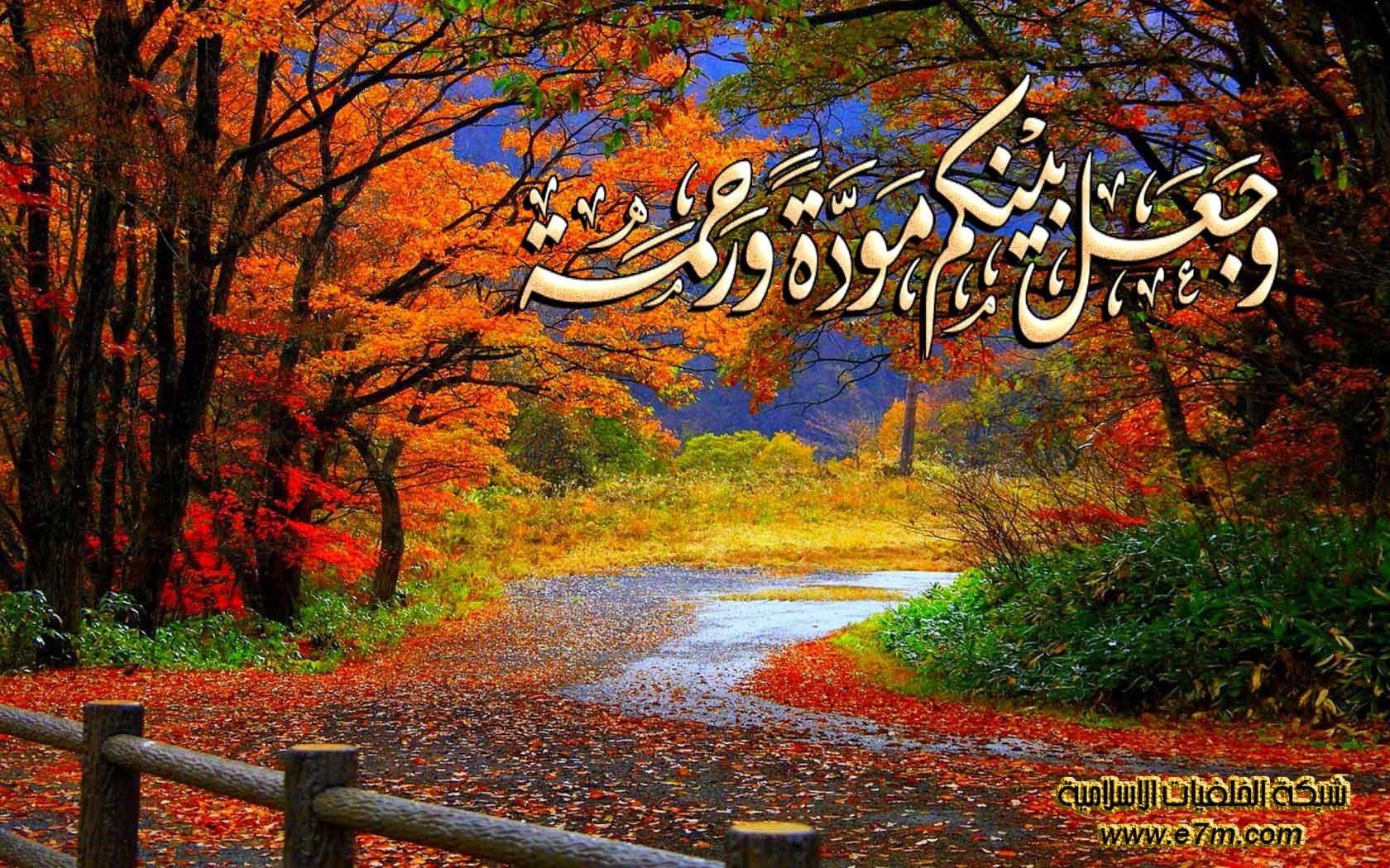 تلاوة رائعة لسورة المؤمنون الشيخ خالد القحطاني Www Qoranet Net Amazing Places On Earth Nature Scenes Nature