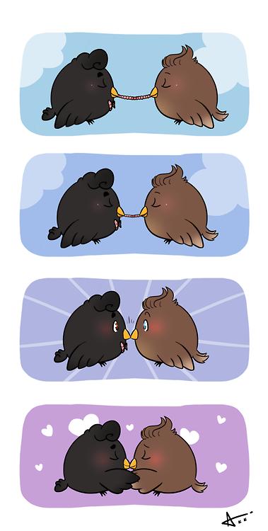 klaine Birds