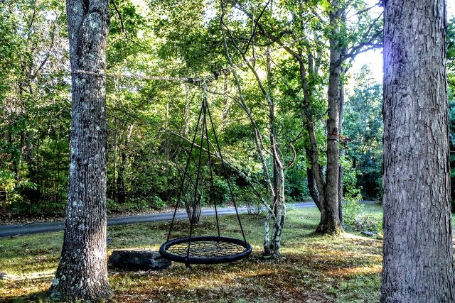 How To Install A Swing Between Trees Tree Swings Diy Two Trees Tree House Diy