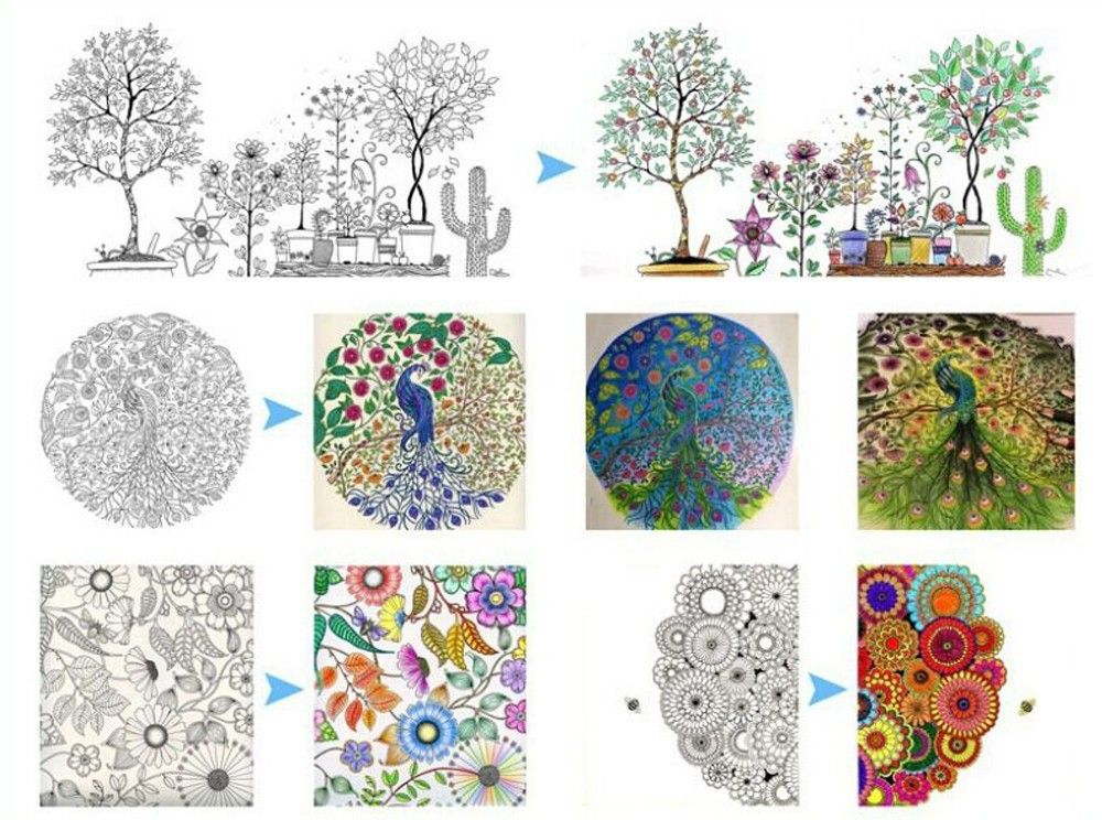Secret Garden Coloring Book Envio 12 Colores Lapiz Libro De Dibujo Pintura En