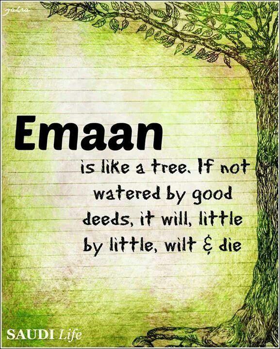Iman (Faith) is important. Prayers. Meditation ...
