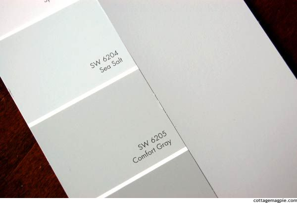 From Silver Sage To Sea Salt Sea Salt Sherwin Williams Room