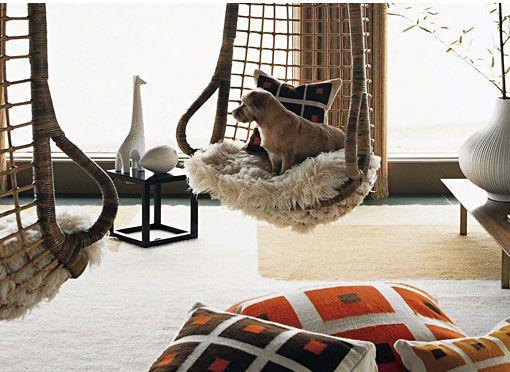 Jonathan Adler's beloved Norwich terrier, Liberace, enjoying their favorite hanging chair.