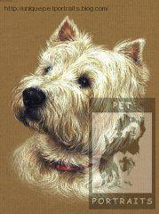 Westie dog pet portrait http://uniquepetportraits.blog.com/galleries/dogs-gallery-2/
