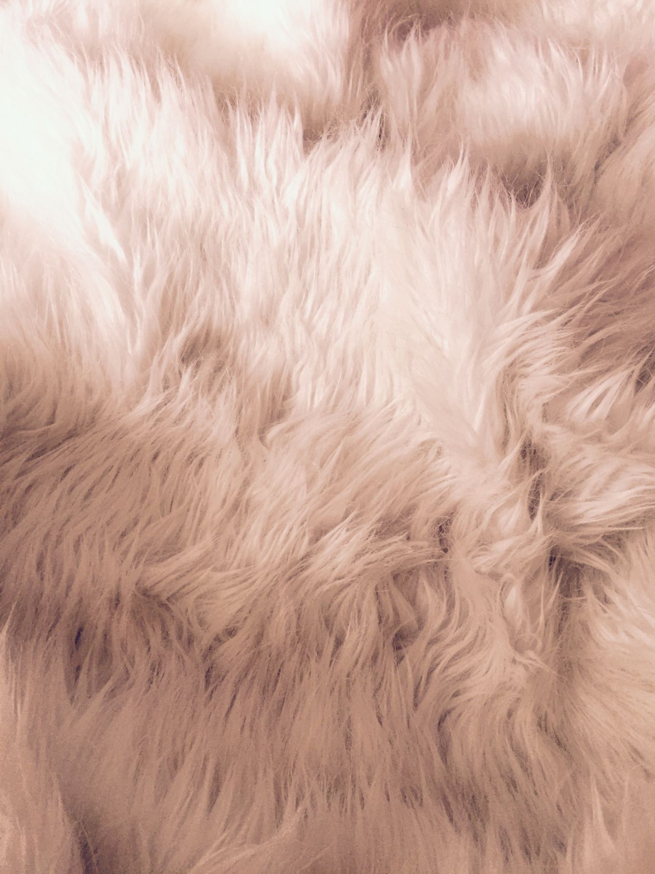 devotion Fur background, Next wallpaper, Wallpaper