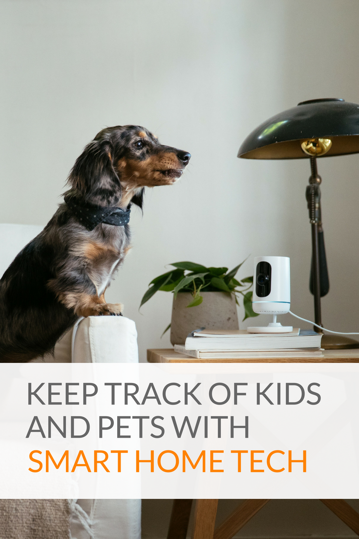 Keep Track Of Kids And Pets With Smart Home Technology Home Technology Smart Home Technology Animals For Kids
