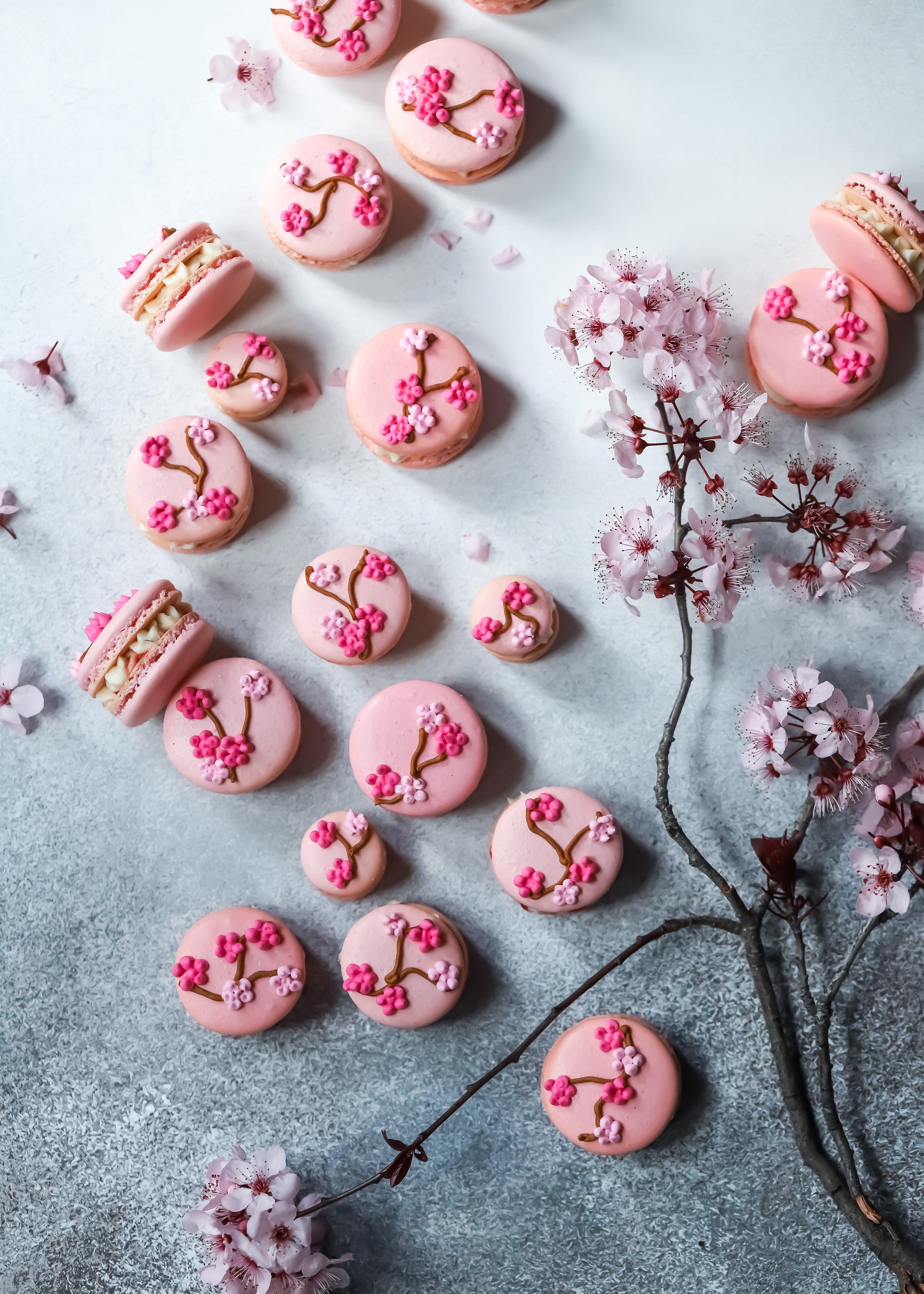 Cherry Blossom Macarons With A Cherry Blossom Buttercream And Cherry Blossom Jam Jam Lab Recipe Cherry Blossom Party Butter Cream Macarons