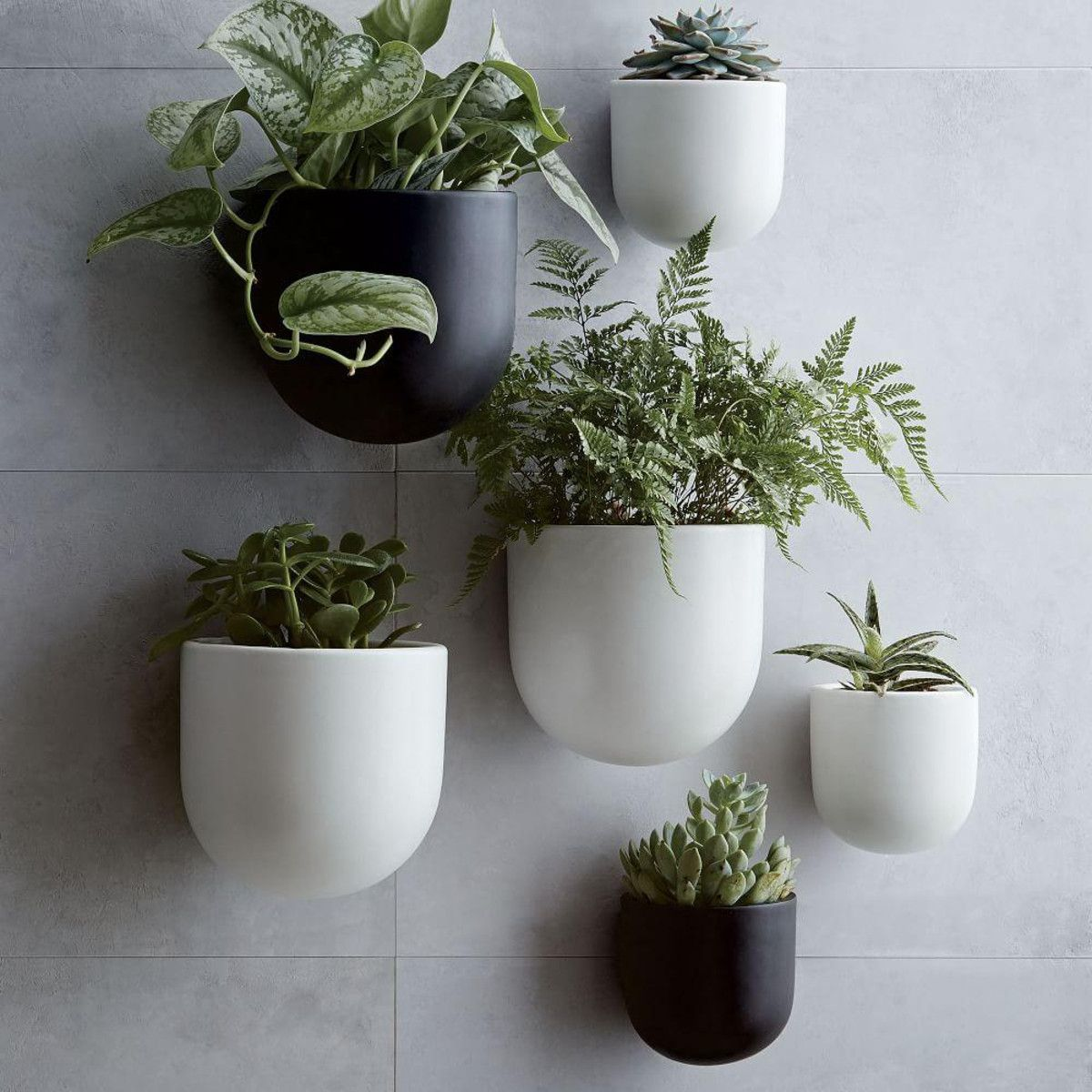 Ceramic Wallscape Planters | Planters, Plants and House
