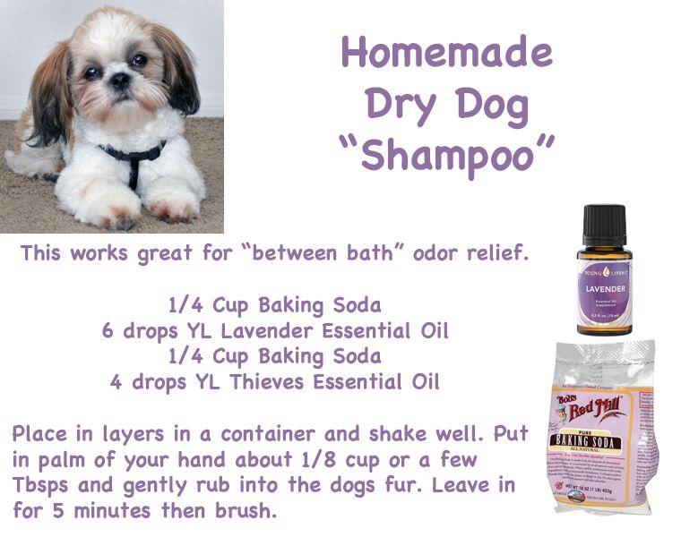 Dry Dog Shampoo Essential Oils Dogs Dog Shampoo