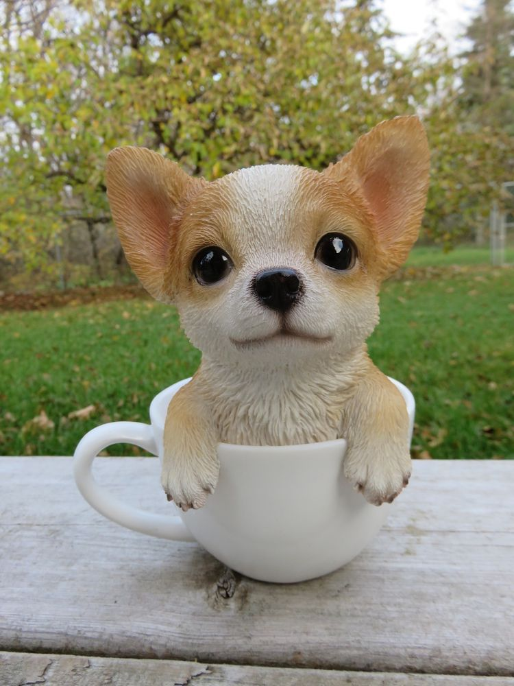 Chihuahua Puppy Dog Figurine In Teacup Statue Resin Pet 6 H