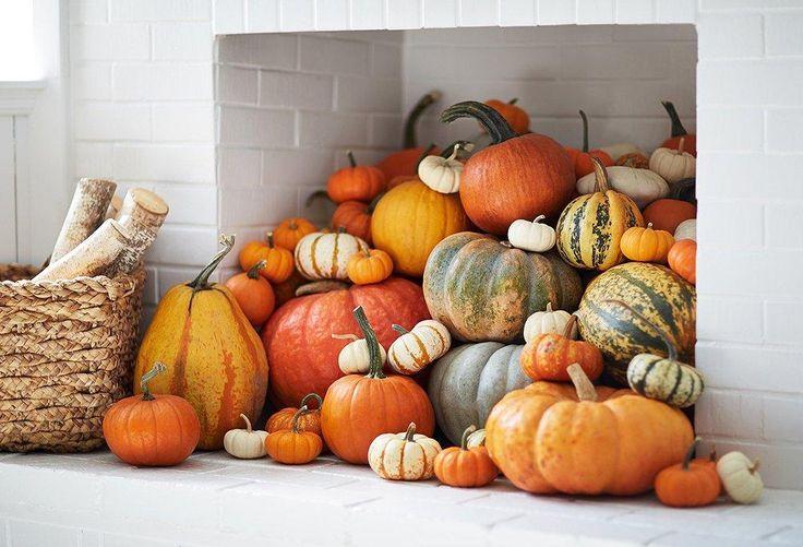 6 Scary-Good Halloween Decorating Ideas Halloween decorating ideas