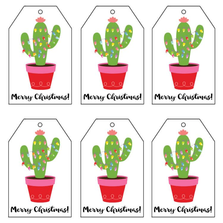Image Result For Cactus Plant Gift Tag Clip Art Christmas Cactus Gift Cactus Gifts Easy Homemade Christmas Gifts