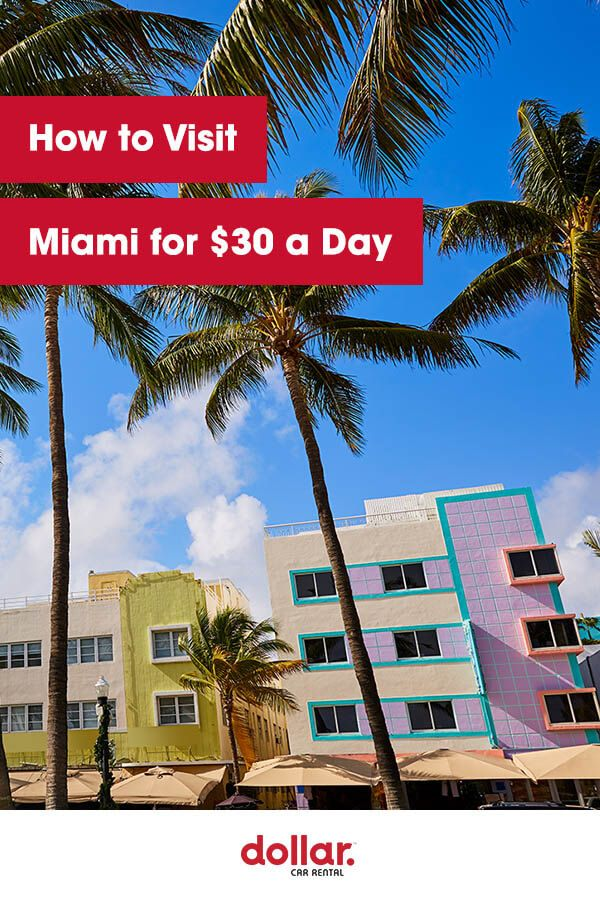 How to Visit Miami on a 30 a Day Budget Little haiti