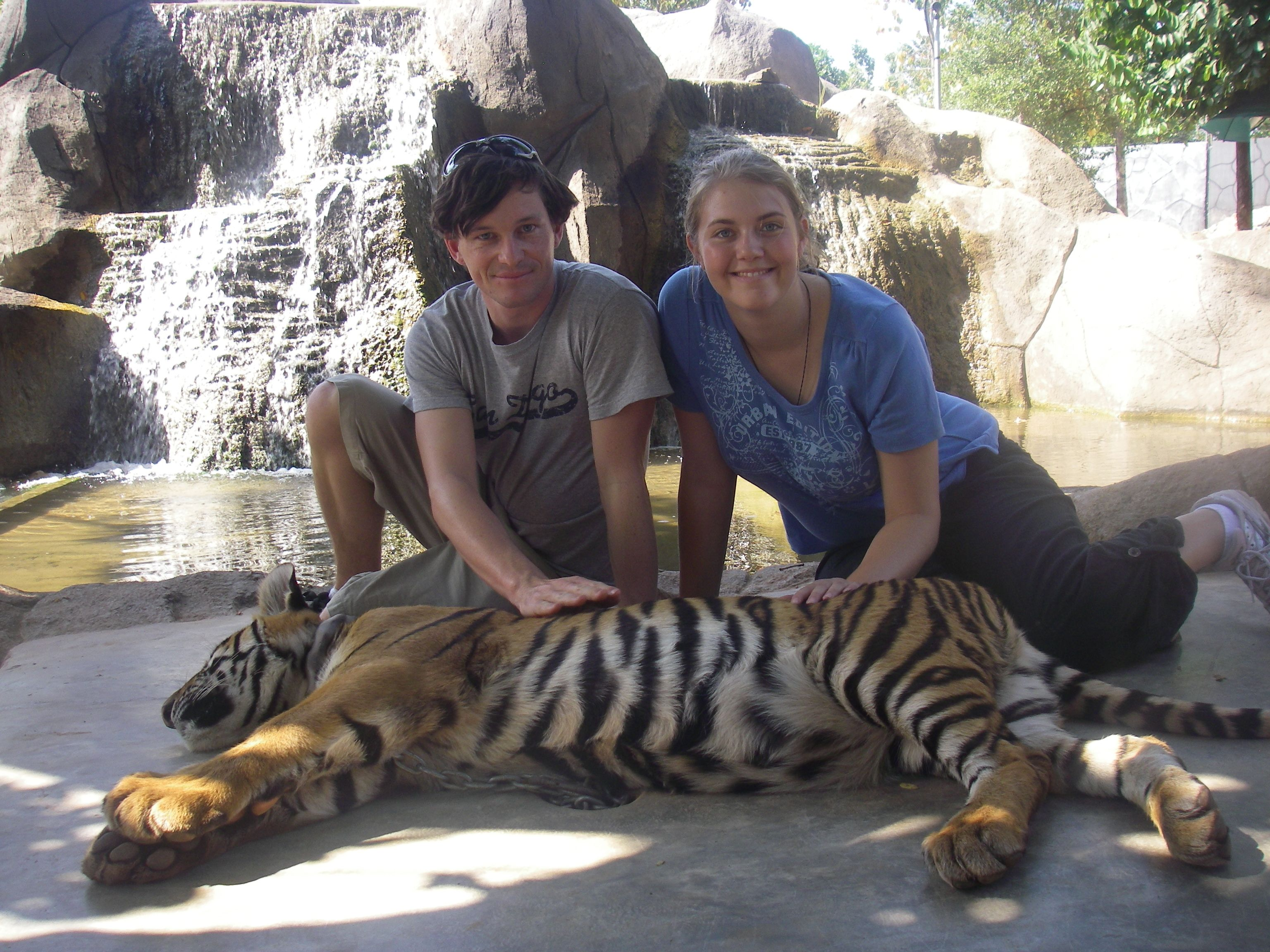 Reincarnated (Doped up) Tigers near Bangkok