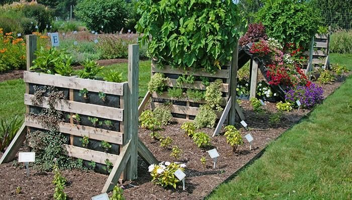 In Another Beautiful Pallet Garden Art Idea You Can Witness A