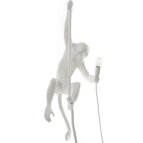 Ceiling Blancadeco Colores Pinterest Lámpara Monkey Salon 2ew9hdi b7fY6gyv