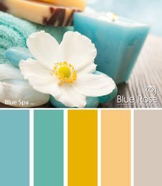 spa colours scheme - Google Search