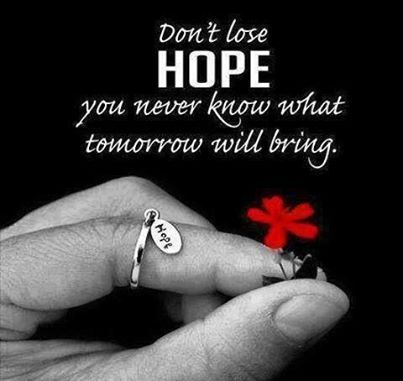 dont lose hope quotes positive quotes quote inspirational inspirational quotes positive quote