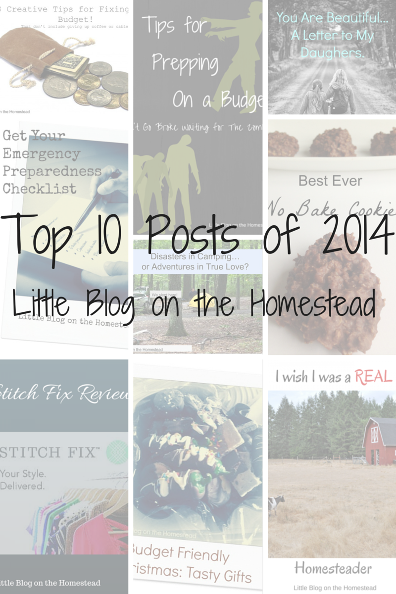 When I started blogging in July I honestly had no idea quite how this year would end. I knew what I hoped for, but you really have no idea if what you're writing will resonate with people, if anyon...