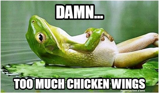 Too much chicken wings, funny frog meme picture best humor website