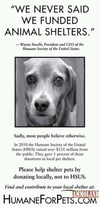 The Humane Society Of The United States Does Not Help Help To Fund