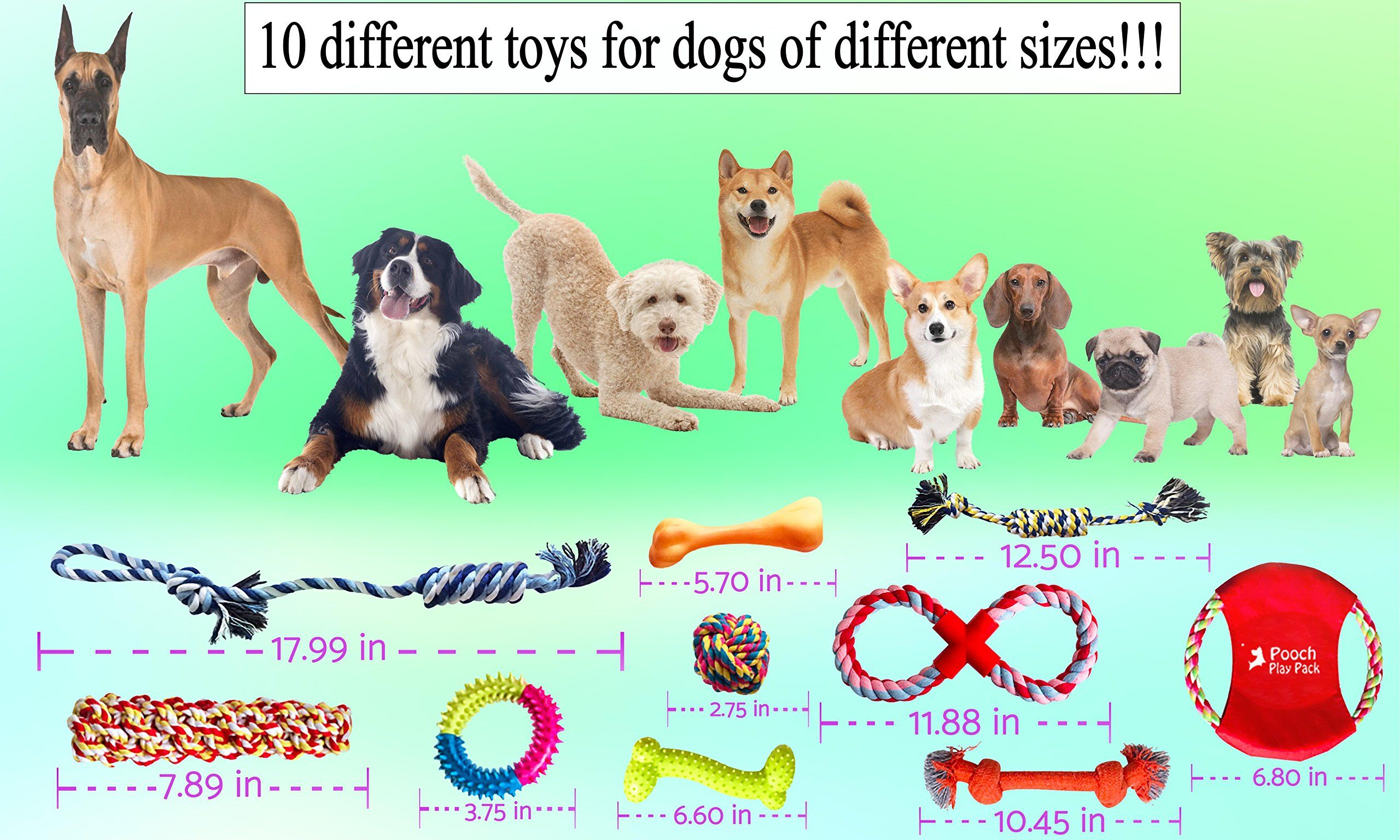 Dog Rope Toys 10 Piece Gift Set Interactive Chew Toy For Small Medium Large Dogs Durable Chewy Squeaky Ropes Tug Assortment Teething To Dog Toys Interactive Puppy Puppy Chew Toys
