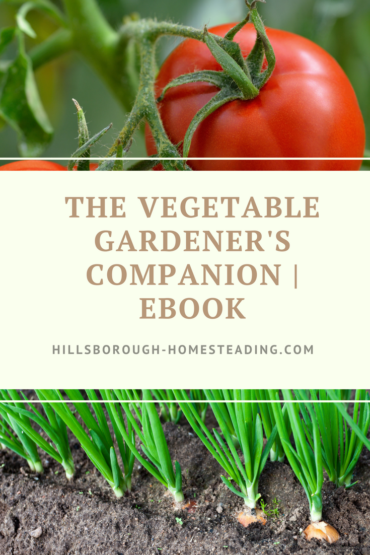 Free Download Get Your Copy Of The Homesteader S Vegetable Garden Companion Tips And Tricks For G Backyard Vegetable Gardens Vegetables Vegetable Garden Tips
