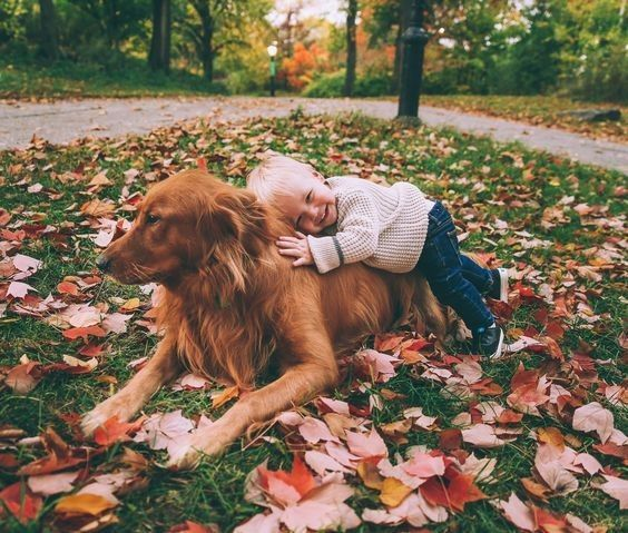 Playful Fall Days - Prepare To Have Your Heart Melt With These Animal And Baby Pictures - Photos