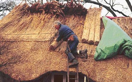 9 12 Thatching Verb To Make A Roof With Dried Plant Material