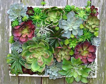 Succulent Arrangement Large Faux Succulent Wall Hanging 20 Arrangement Wall Decor Vertical Garde Succulent Wall Hanging Floral Arrangements Faux Succulents