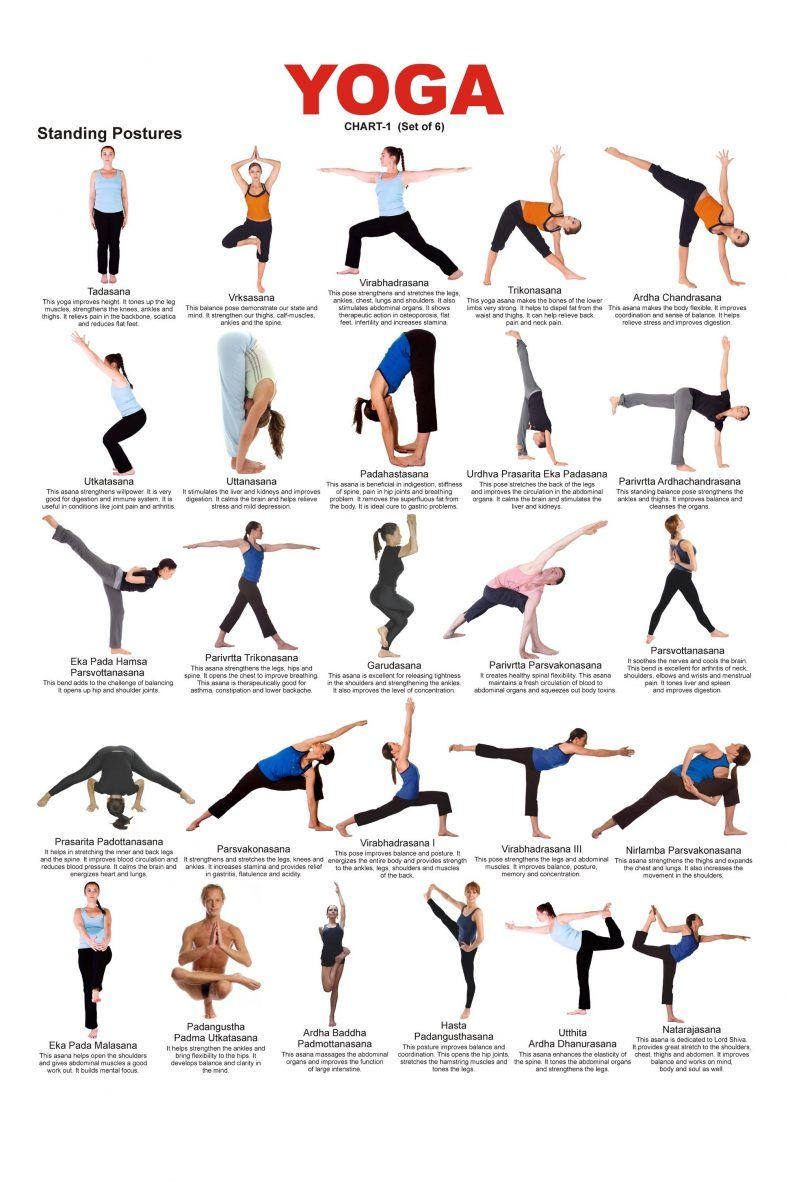 Yoga Poses And Their Names