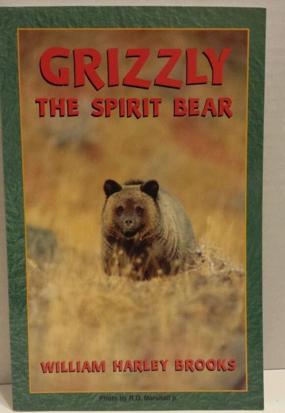 spirit bear book