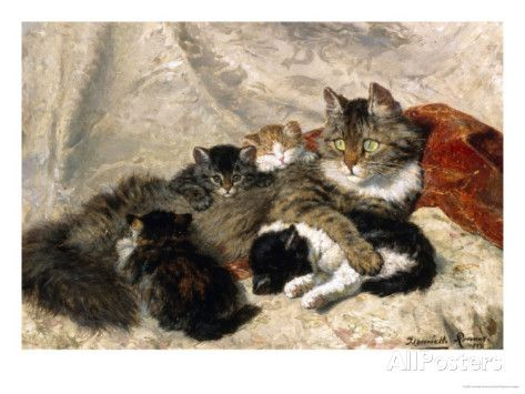 Taking a Cat Nap Giclee Print by Henriette Ronner-Knip at AllPosters.com