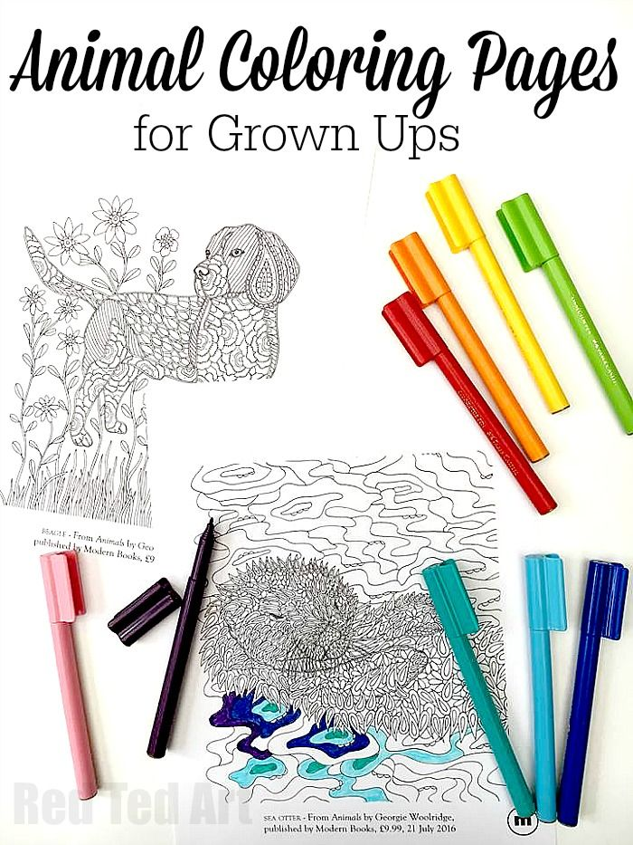 Animal Coloring Pages for Grown Ups - Dog and Otter Designs Otters - new animal coloring pages with patterns