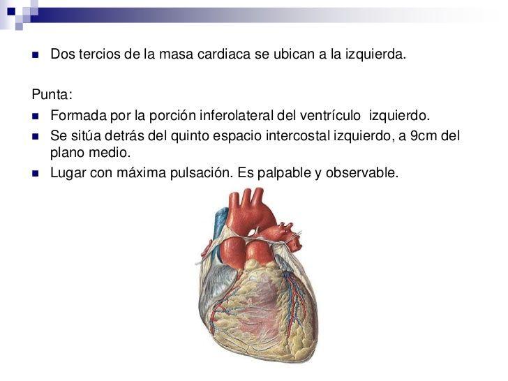 Power del corazón, bien completo, con estructura, ubicación, caras ...