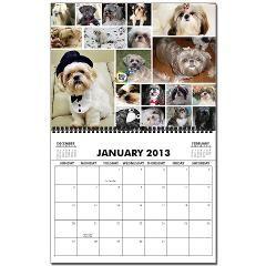 2013 Calendar Dogsdogsdogs Supporting Rescue Group Lone Star Shih Tzu Lhasa Apso Rescue Houston Tx Lhasa Apso Fur Babies Shih Tzu