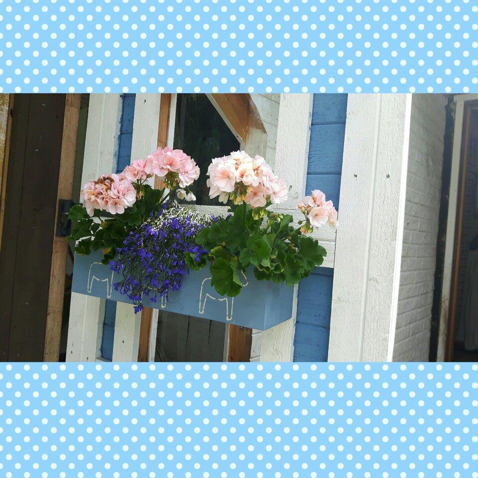 Blomsterlådan på altandörren.