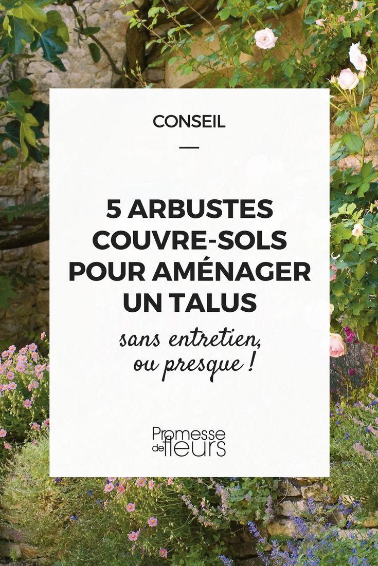 Arbuste Terrain Sec Ombre 5 arbustes couvre-sols pour aménager un talus | couvre sol